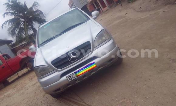 Acheter Occasion Voiture Mercedes‒Benz ML-Class Gris à Cotonou au Benin