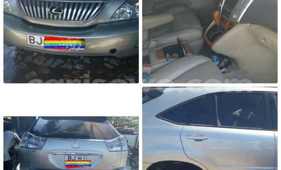 Acheter Occasion Voiture Lexus RX 330 Gris à Cotonou au Benin