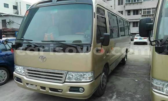 Acheter Occasion Utilitaire Toyota Coaster Beige à Cotonou au Benin