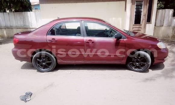 Acheter Occasion Voiture Toyota Corolla Rouge à Cotonou au Benin