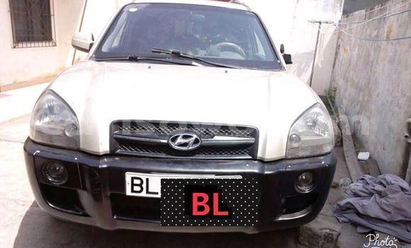 Acheter Occasion Voiture Hyundai Santa Fe Gris à Cotonou, Benin