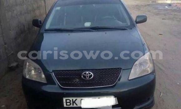 Acheter Occasion Voiture Toyota Corolla Autre à Cotonou au Benin