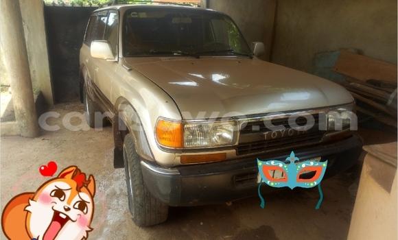 Acheter Occasions Voiture Toyota Land Cruiser Beige à Porto Novo au Benin