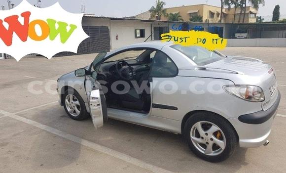 Acheter Occasion Voiture Peugeot 206 Gris à Cotonou, Benin