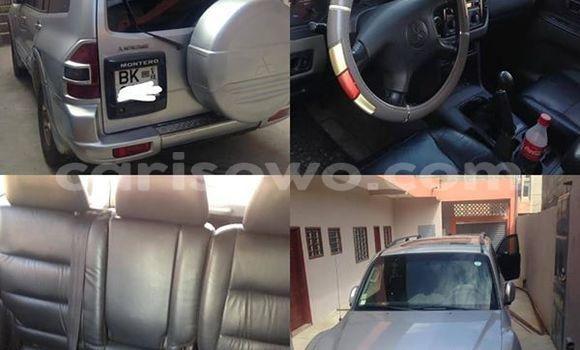 Acheter Occasion Voiture Mitsubishi Montero Gris à Cotonou, Benin