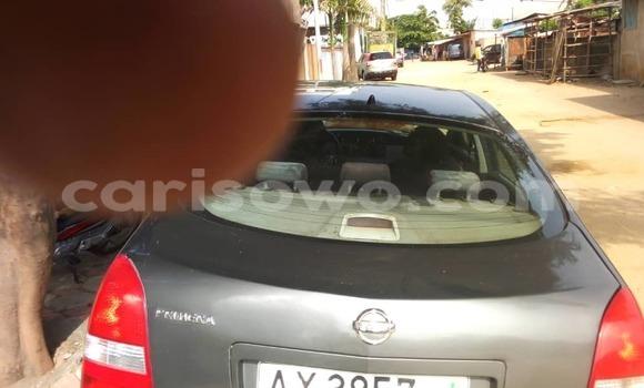 Acheter Occasion Voiture Nissan Primera Marron à Cotonou, Benin