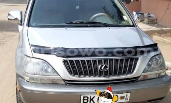 Acheter Occasion Voiture Lexus RX 300 Gris à Cotonou, Benin