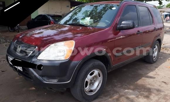 Buy Used Honda CR-V Red Car in Cotonou in Benign