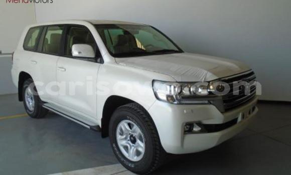 Acheter Neuf Voiture Toyota Land Cruiser Blanc à Porto Novo, Benin