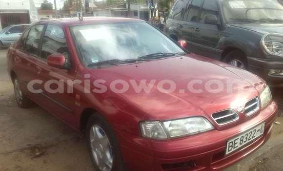Acheter Occasion Voiture Nissan Primera Rouge à Cotonou au Benin