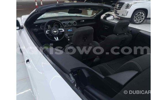 Acheter Importé Voiture Ford Mustang Blanc à Import - Dubai, Benin