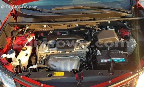 Acheter Importé Voiture Toyota RAV4 Rouge à Import - Dubai, Benin