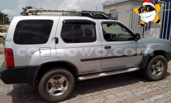 Acheter Occasion Voiture Nissan Xterra Gris à Cotonou, Benin