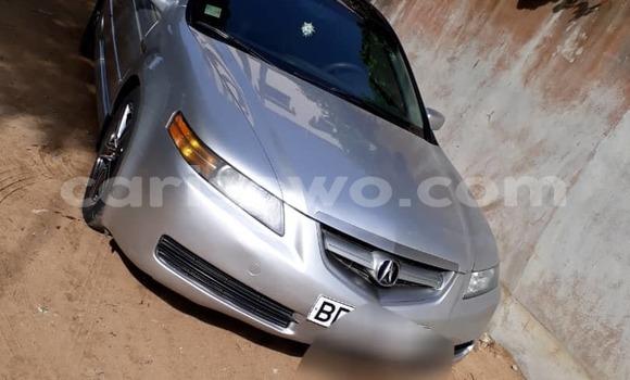 Acheter Occasion Voiture Acura TL Gris à Cotonou, Benin