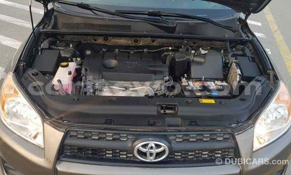 Acheter Importé Utilitaire Toyota HiAce Marron à Import - Dubai, Benin