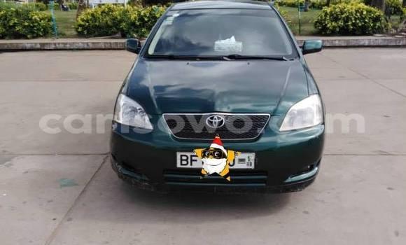 Acheter Occasion Voiture Toyota Corolla Vert à Cotonou, Benin