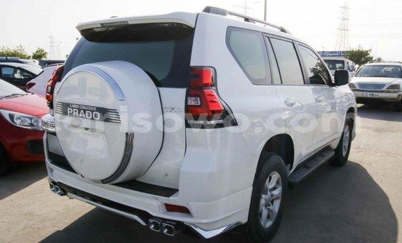 Sayi Imported Toyota Prado White Mota in Import - Dubai a Benin
