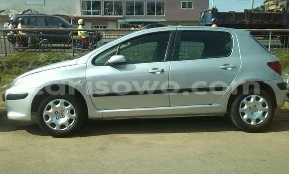 Acheter Occasion Voiture Peugeot 307 Gris à Cotonou, Benin