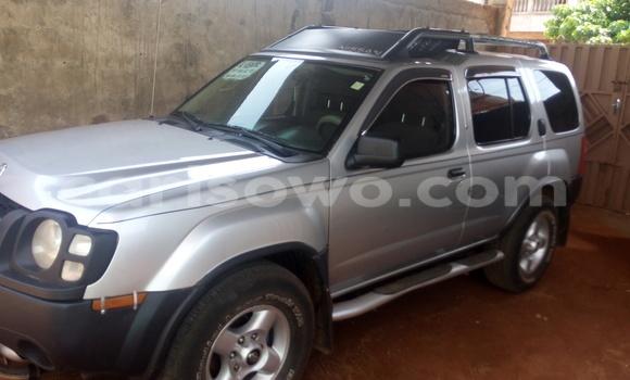 Acheter Occasion Voiture Nissan Xterra Gris à Porto Novo au Benin