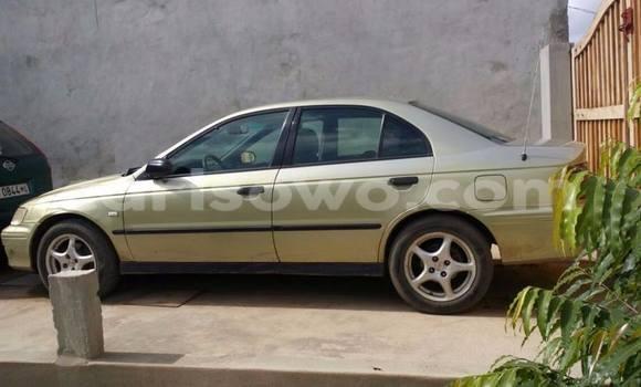 Medium with watermark 12987041 10209892956989001 3032583557390154436 n