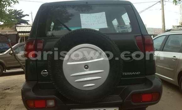 Acheter Occasion Voiture Nissan Terrano Vert à Cotonou, Benin