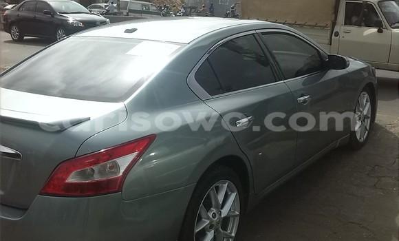 Acheter Occasion Voiture Nissan Maxima Vert à Cotonou au Benin