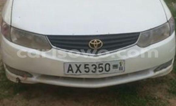 Acheter Occasions Voiture Toyota Solara Blanc à Cotonou au Benin