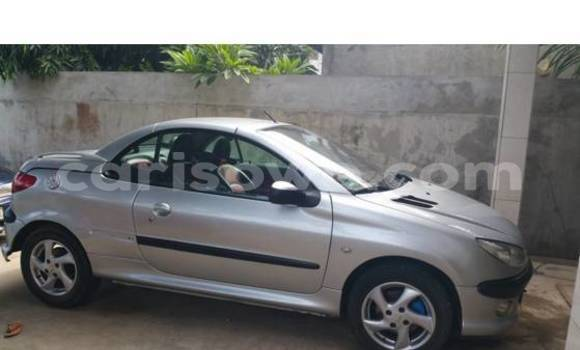 Acheter Occasion Voiture Peugeot 206 Gris à Porto Novo, Benin