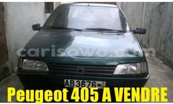 Acheter Occasions Voiture Peugeot 406 Autre à Savalou au Benin