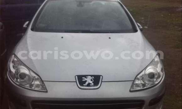 Acheter Occasion Voiture Peugeot 407 Gris à Cotonou, Benin