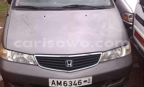 Acheter Occasion Voiture Honda Odyssey Gris à Cotonou, Benin