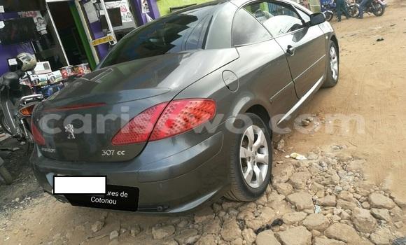 Acheter Occasion Voiture Peugeot 306 Vert à Cotonou au Benin