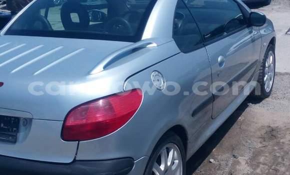Acheter Occasions Voiture Peugeot 306 Gris à Cotonou au Benin