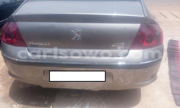Acheter Occasion Voiture Peugeot 407 Autre à Cotonou, Benin