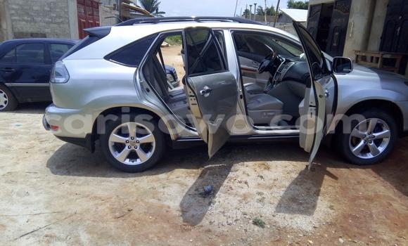 Acheter Occasion Voiture Lexus RX 330 Gris à Cotonou, Benin