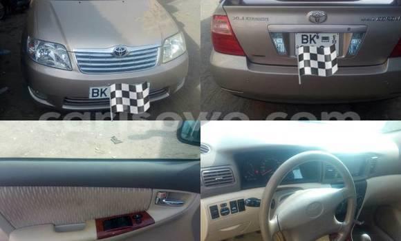 Acheter Occasion Voiture Toyota Corolla Marron à Savalou au Benin