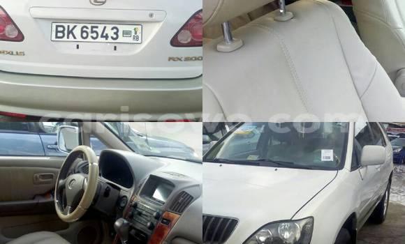 Acheter Occasion Voiture Lexus RX 300 Blanc à Savalou, Benin