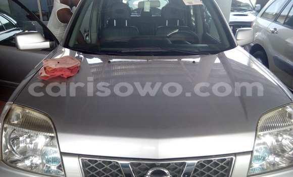 Acheter Occasions Voiture Nissan Pathfinder Marron à Savalou au Benin