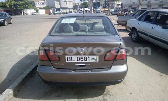 Acheter Occasion Voiture Nissan Primera Marron à Savalou au Benin