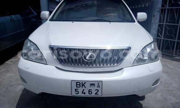 Acheter Occasion Voiture Lexus RX 350 Blanc à Cotonou au Benin