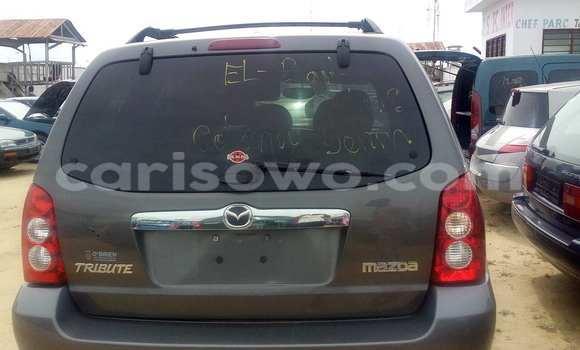 Acheter Occasion Voiture Mazda Tribute Marron à Porto Novo au Benin