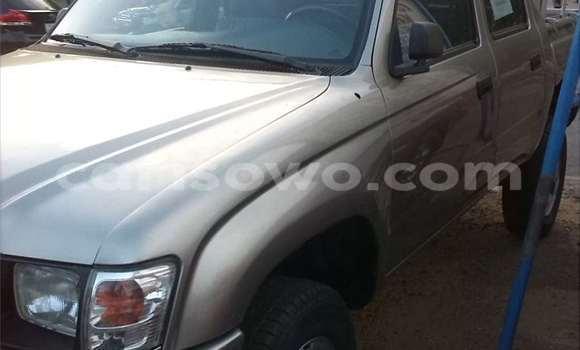 Acheter Occasion Voiture Toyota Land Cruiser Gris à Cotonou au Benin