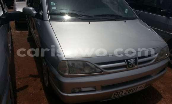 Acheter Occasion Voiture Peugeot 806 Gris à Parakou au Benin