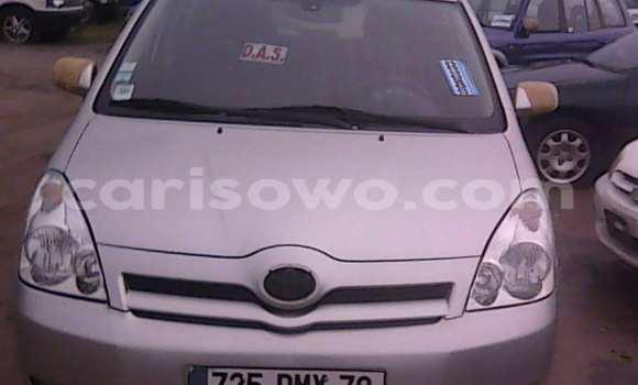 Acheter Occasions Voiture Toyota Corolla Gris à Porto Novo au Benin