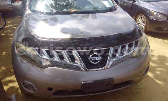 Acheter Occasion Voiture Nissan Murano Gris à Porto Novo, Benin