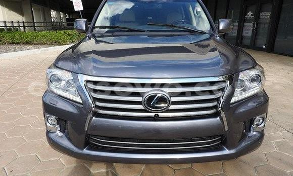 Acheter Occasions Voiture Lexus LX Beige à Savalou au Benin