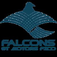 Medium about us fzco logo